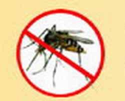 Use in Cuba for Fight Dengue Mosquito New Product, Patented by LABIOFAM Laboratories