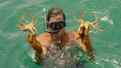 Fishers dive for lobsters in Trinidad, Cuba