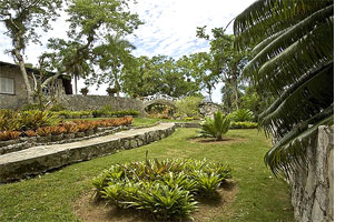 Recovery of Well Known Orchid Garden in West of Cuba