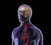Muestra Cuba adelantos de las neurociencias en foro mundial