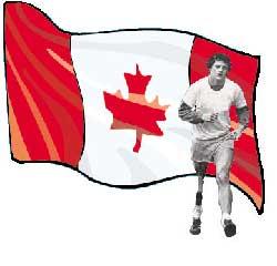 terry flag