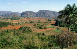 Vinales: One of the most worldwide-recognized views of Cuba.
