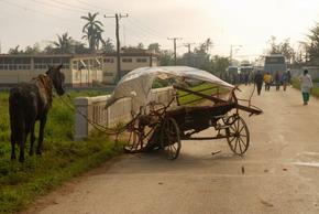 En Camaguey Cuba tres muertos y dos lesionados por accidente del transito