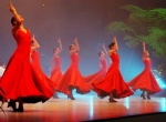 Vida, the resent show of the Lizt Alfonso Ballet, won the favour of the public in Cuba and the other countries.