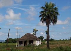 Bohio in Pinar del Río