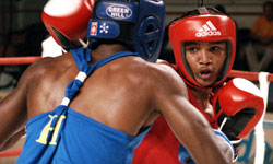 Boxers from Havana retain the crown in the Cuban National Boxing Championships