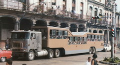Camel, cuban transport