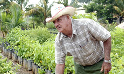 Cuban Agriculture Getting a Second Wind