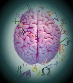 Founded in Havana the Latin American Association for the Mapping of the Human Brain.