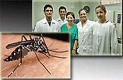 Hondurans Studying in Cuba Ready to Fight Dengue in their Country
