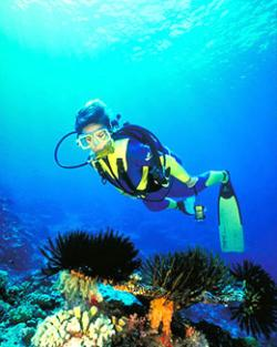 Cuba, the adventure to enjoy in their depths
