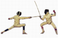 World Fencing Cup