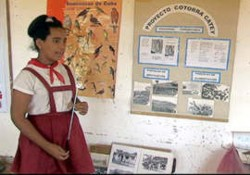 Para la proteccion del catey realizan festival medioambiental en Cienfuegos Cuba