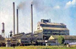 Major Pinar del Rio Sugar mill among the best