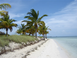 Beach in Cayo Guillermo