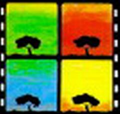 Logo Videomed