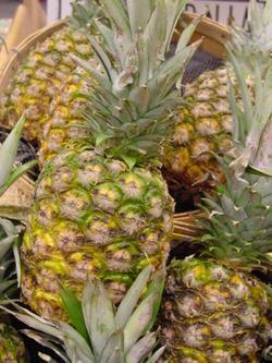 Cubas Citrus Sector Diversified