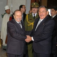 Cuban President Raul Castro began on Saturday an official visit to Algeria