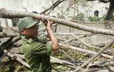 Cuba recovers with work of all of the destruction of the hurricanes