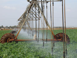 New Irrigation Equipment to Boost Havana Farming
