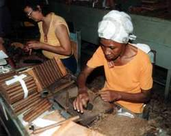 Tobacco Workers Day, taking place in Pinar del Rio, Cuba