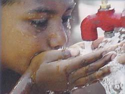 tomando agua
