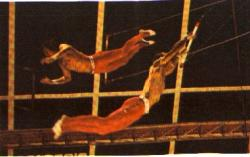The National Circus of Cuba will rescue the Bird's Flight