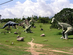 Todays Dinosaurs in the East of Cuba