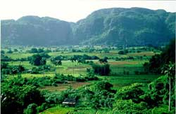 The Canarias Cooperation will Help to Residents of Cuba''s Viñales Valley