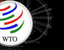 WTO to US Respect Cuba
