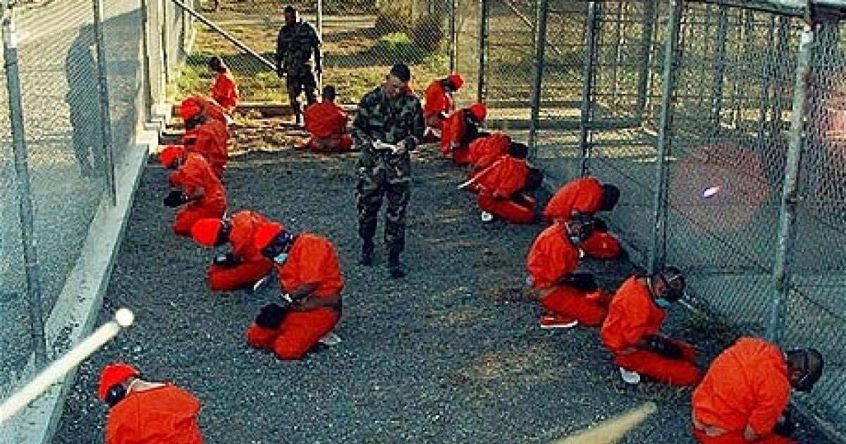 Against torture essay